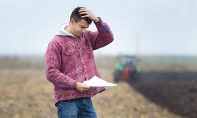 ANAF trimite scrisori fermierilor care urmează să fie executați silit!